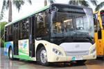 五洲龙FDG6801EVG1公交车(纯电动15-24座)