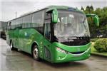 银隆GTQ6119BEVH8客车(纯电动24-51座)