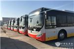 无惧高寒!130辆宇通纯电动客车将在哈尔滨投运