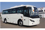 沂星SDL6838EVG公交车(纯电动16-36座)