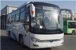 宇通ZK6826BEVG12A公交车(纯电动16-34座)