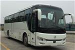 金旅XML6122JEVY60客车(纯电动24-54座)