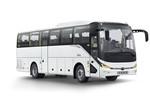 宇通ZK6117BEVY35客车(纯电动24-52座)