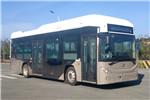 飞驰FSQ6111FCEVG1公交车(氢燃料电池20-34座)