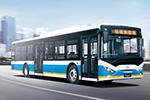 银隆GTQ6121BEVBT21公交车(纯电动22-42座)