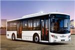 银隆NJK6105BEVBT1公交车(纯电动17-35座)