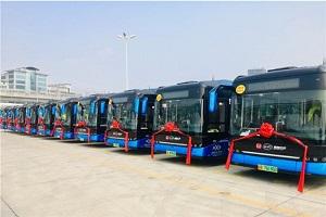 数据看客车|比亚迪新能源客车8月销量破千,增长势头迅猛